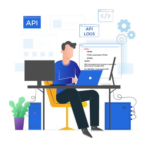 API logs